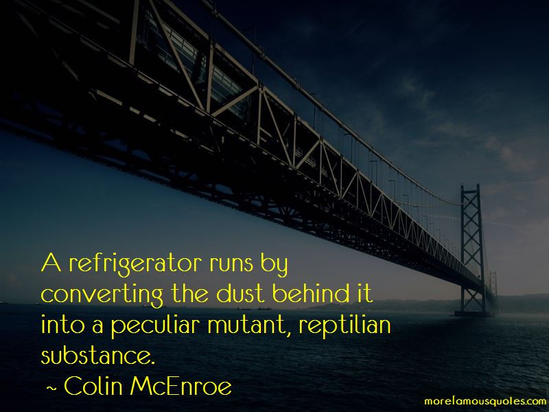 Colin McEnroe Quotes