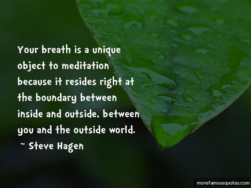 Steve Hagen Quotes Pictures 2