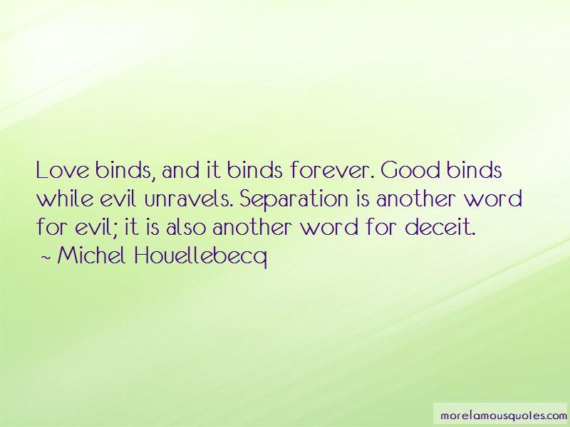 Michel Houellebecq Quotes
