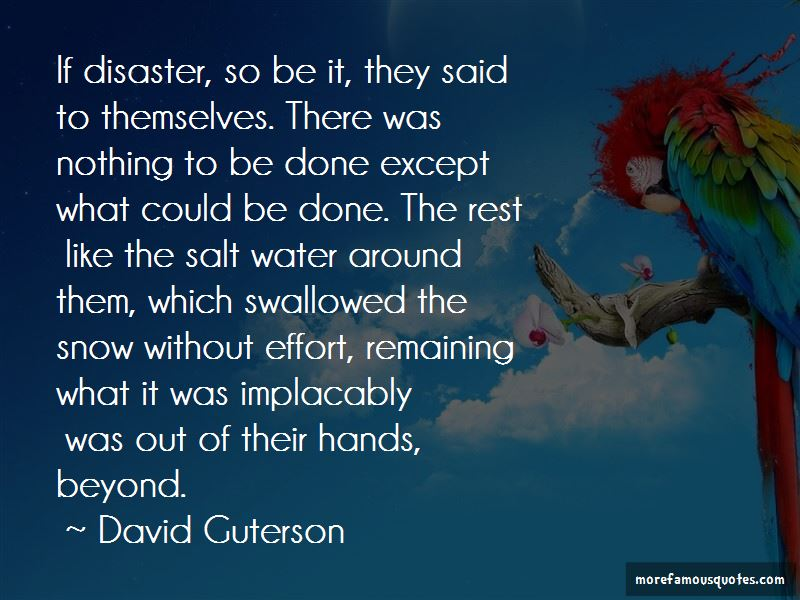 David Guterson Quotes
