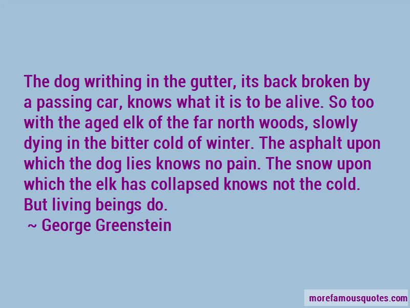 George Greenstein Quotes Pictures 4