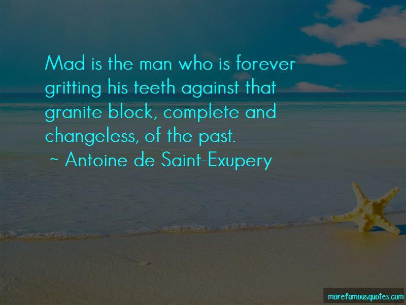 Antoine De Saint-Exupery Quotes Pictures 2