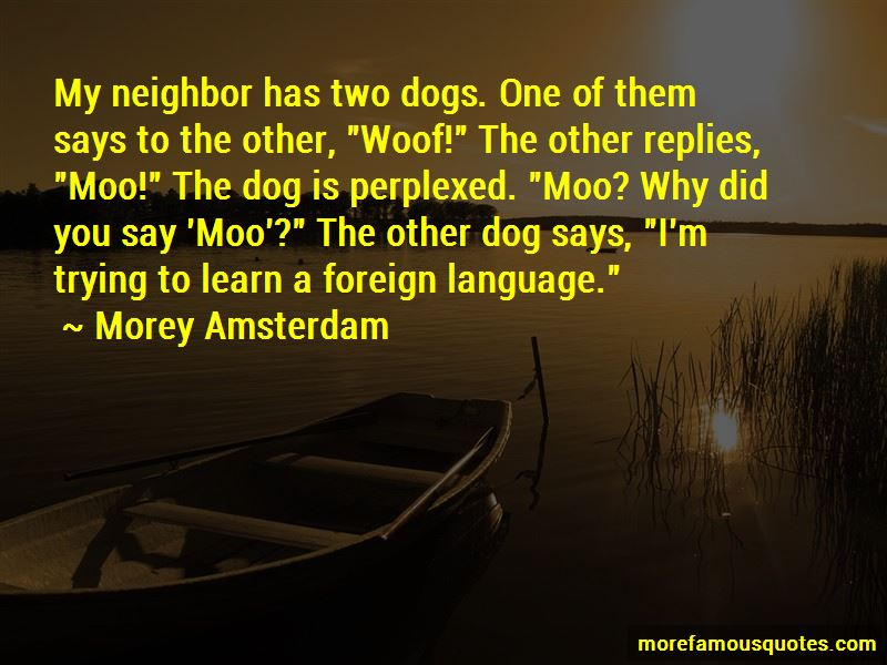 Morey Amsterdam Quotes