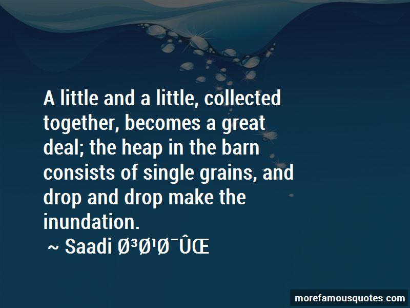 Saadi Quotes Pictures 3