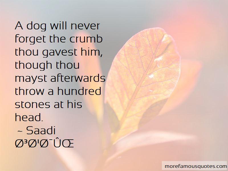 Saadi Quotes