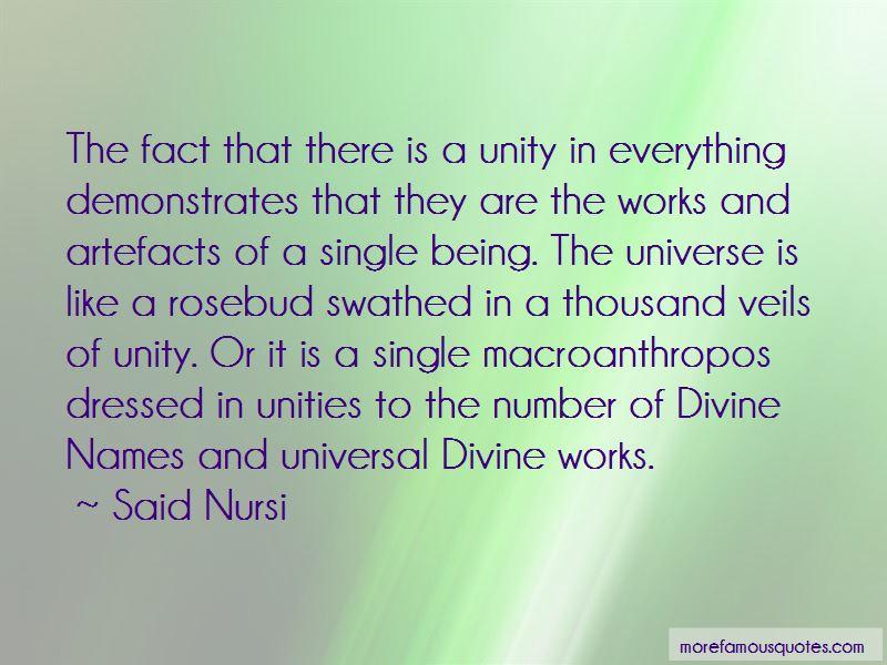Said Nursi Quotes Pictures 4