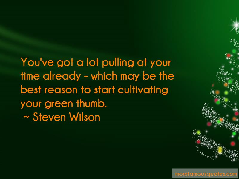 Steven Wilson Quotes