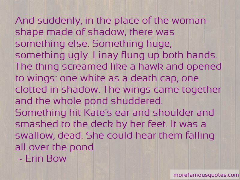 Erin Bow Quotes