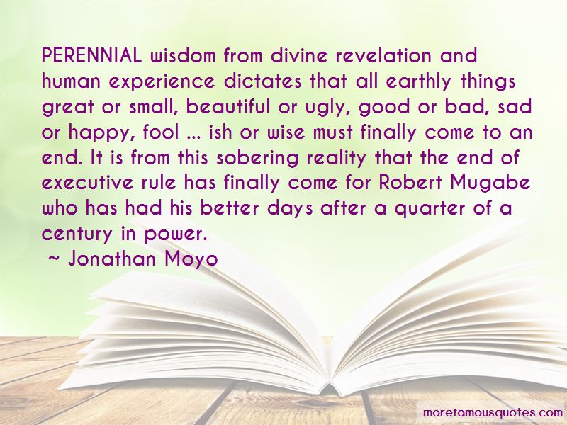Jonathan Moyo Quotes