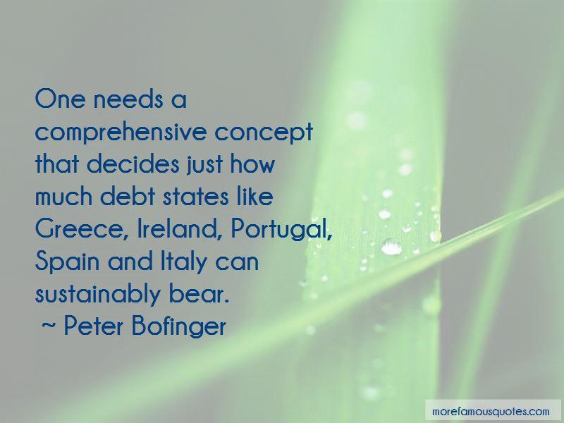Peter Bofinger Quotes