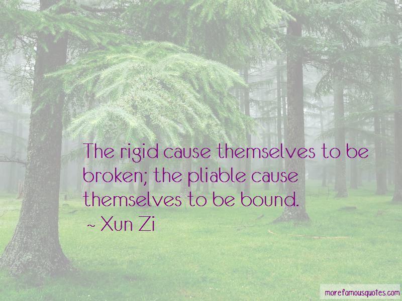 Xun Zi Quotes Pictures 2