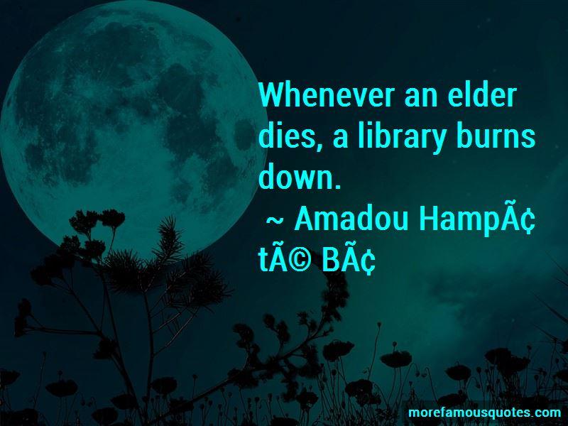 Amadou-Hampate-Ba Quotes