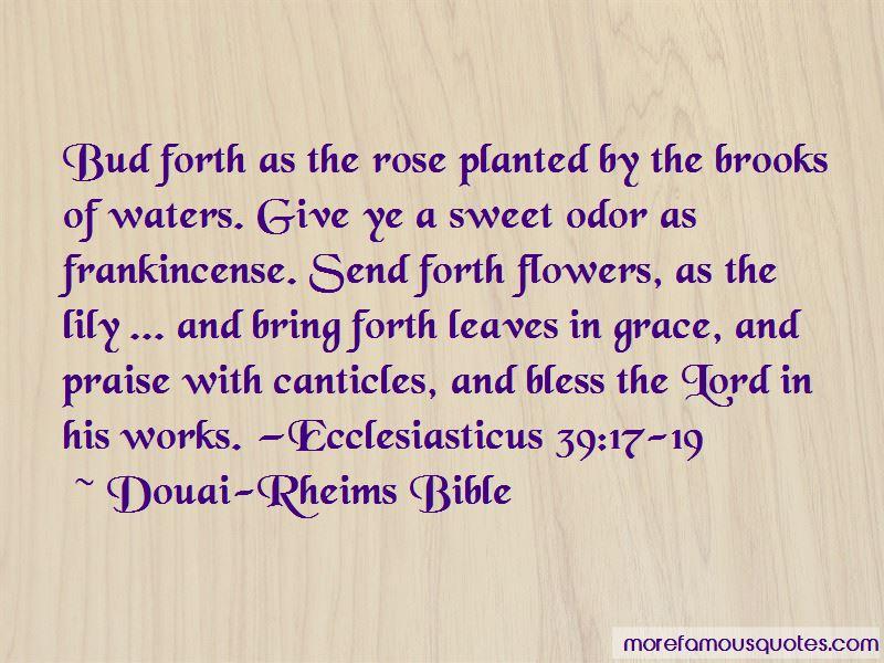 Douai-Rheims Bible Quotes