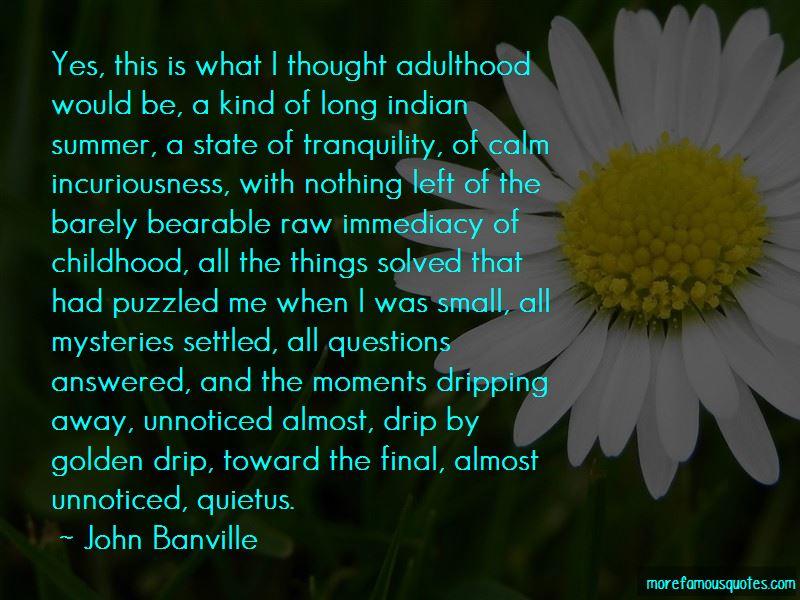 John Banville Quotes Pictures 2