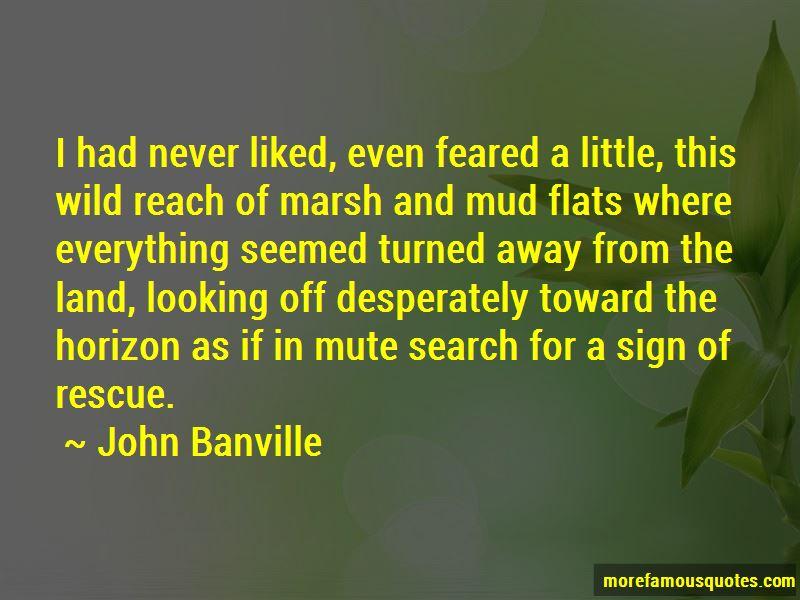 John Banville Quotes Pictures 3