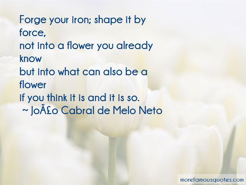 João Cabral De Melo Neto Quotes