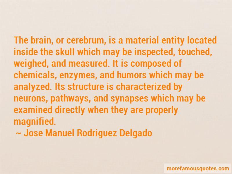 Jose Manuel Rodriguez Delgado Quotes Pictures 3