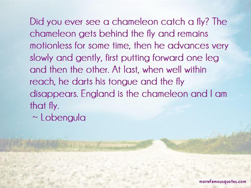 Lobengula Quotes