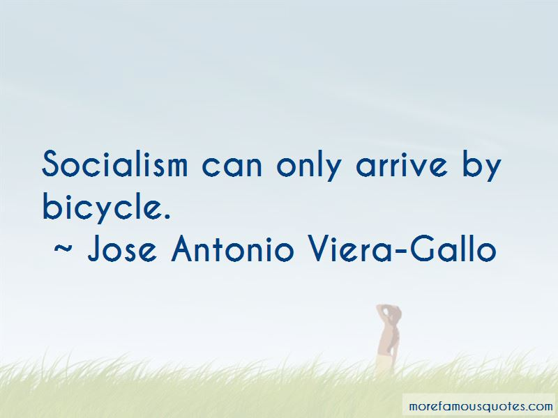 Jose Antonio Viera-Gallo Quotes