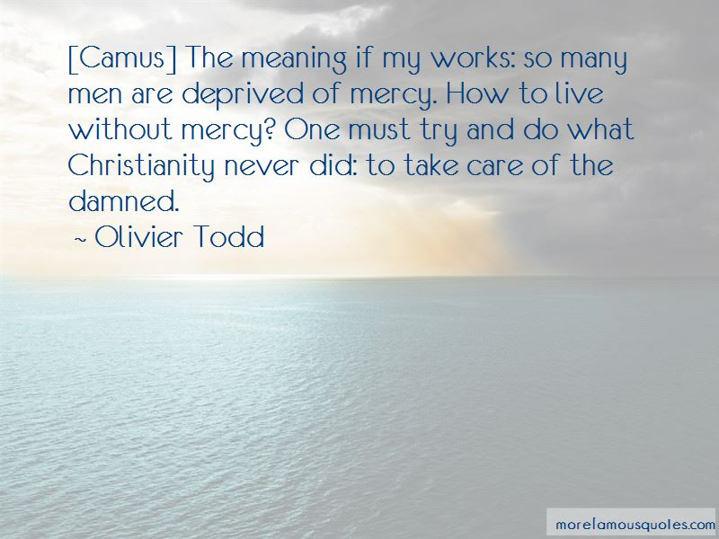 Olivier Todd Quotes Pictures 3