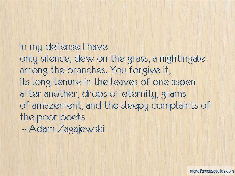 Adam Zagajewski Quotes