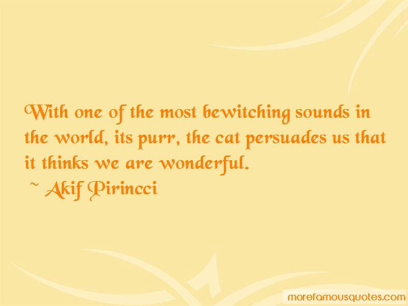 Akif Pirincci Quotes