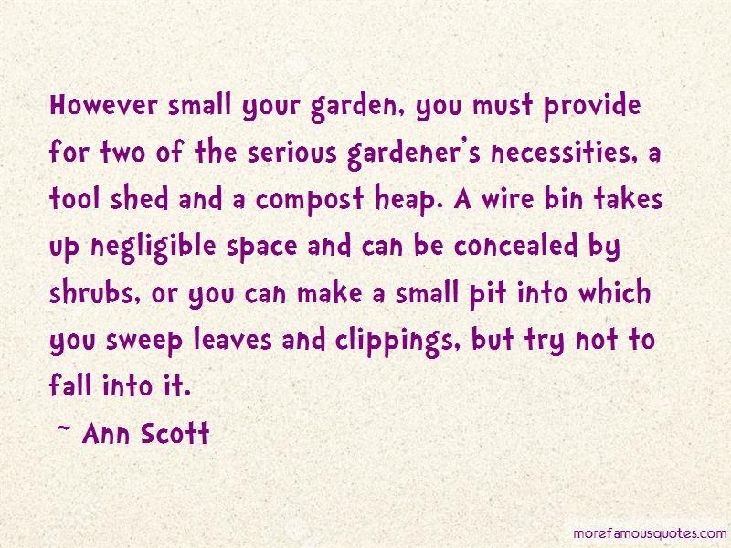 Ann Scott Quotes Pictures 2