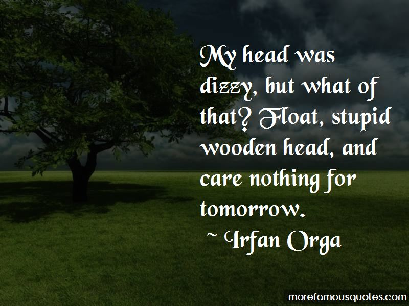 Irfan Orga Quotes Pictures 2