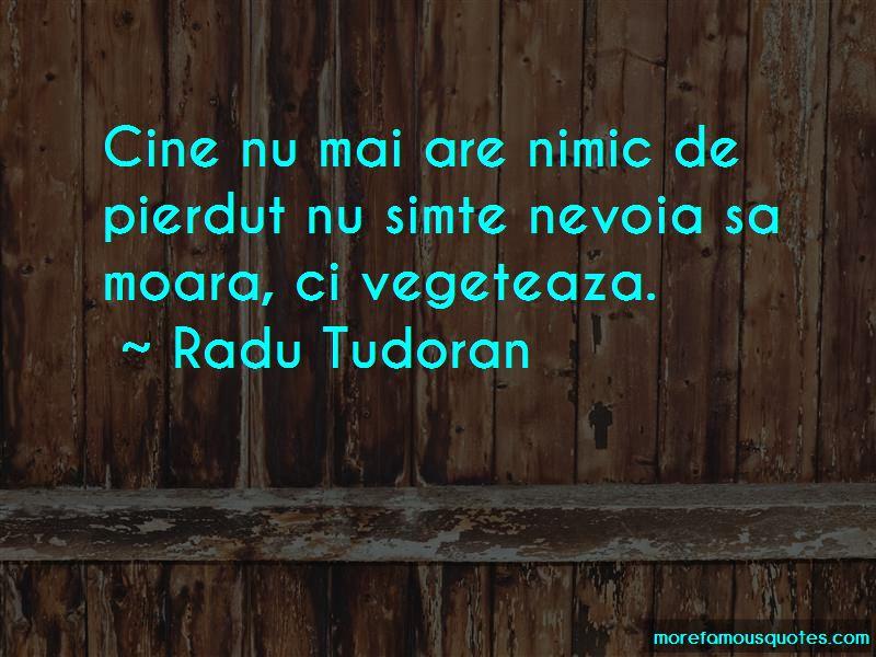 Radu Tudoran Quotes