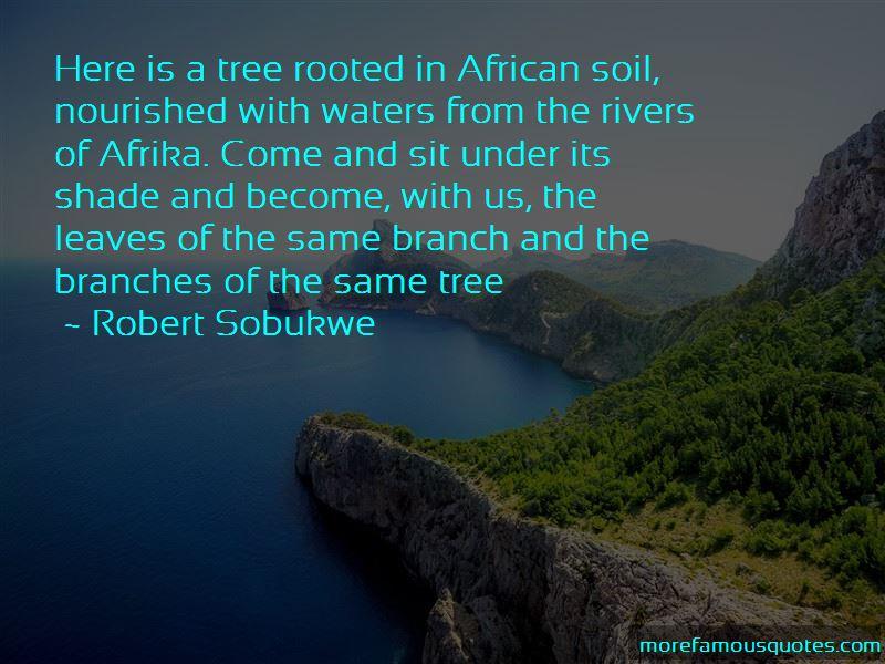 Robert Sobukwe Quotes Pictures 2