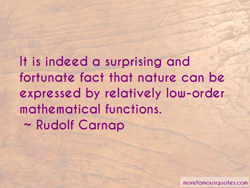 Rudolf Carnap Quotes Pictures 4