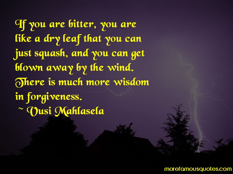 Vusi Mahlasela Quotes