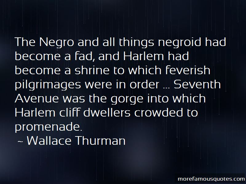 Wallace Thurman Quotes Pictures 4