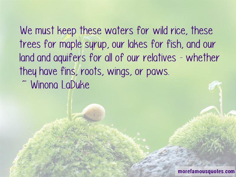 Winona LaDuke Quotes Pictures 4