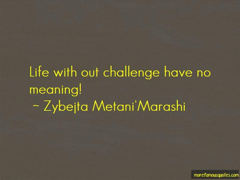 Zybejta Metani'Marashi Quotes