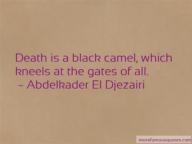 Abdelkader El Djezairi Quotes