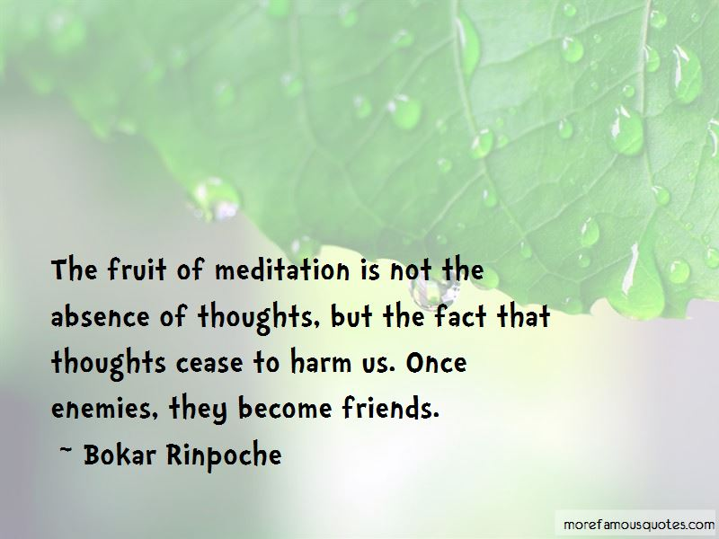 Bokar Rinpoche Quotes Pictures 2