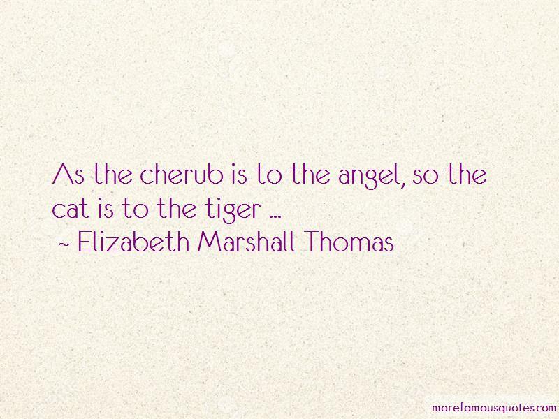 Elizabeth Marshall Thomas Quotes