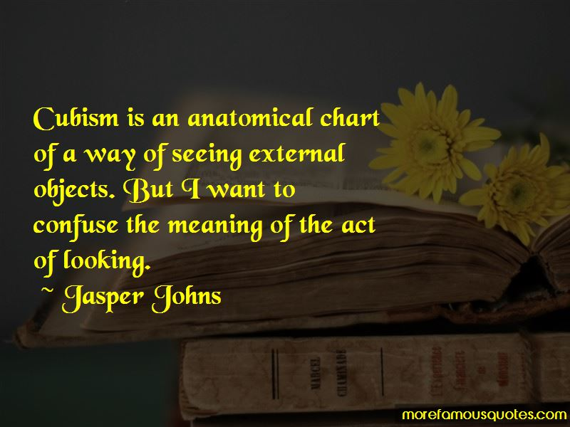 Jasper Johns Quotes Pictures 3