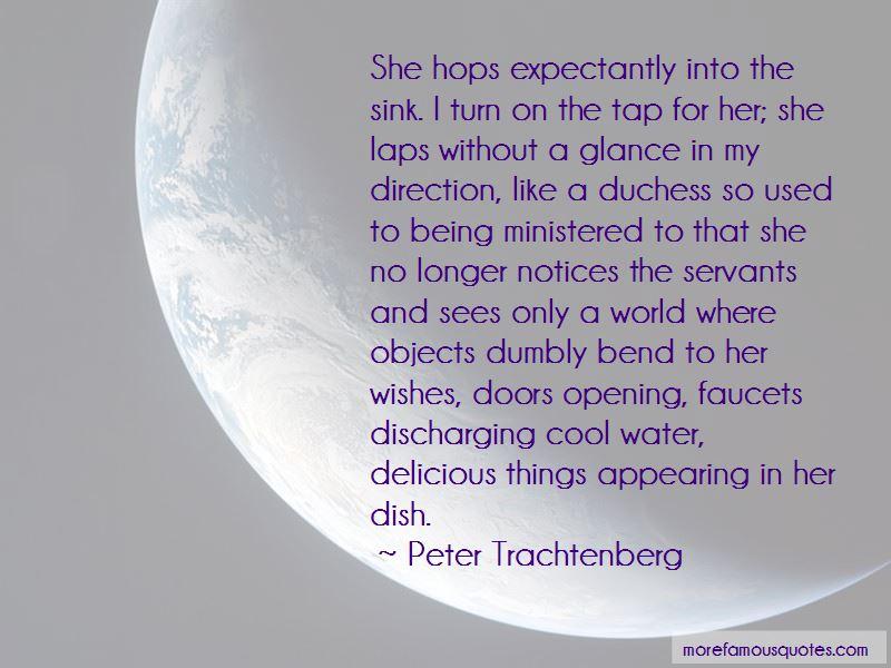 Peter Trachtenberg Quotes