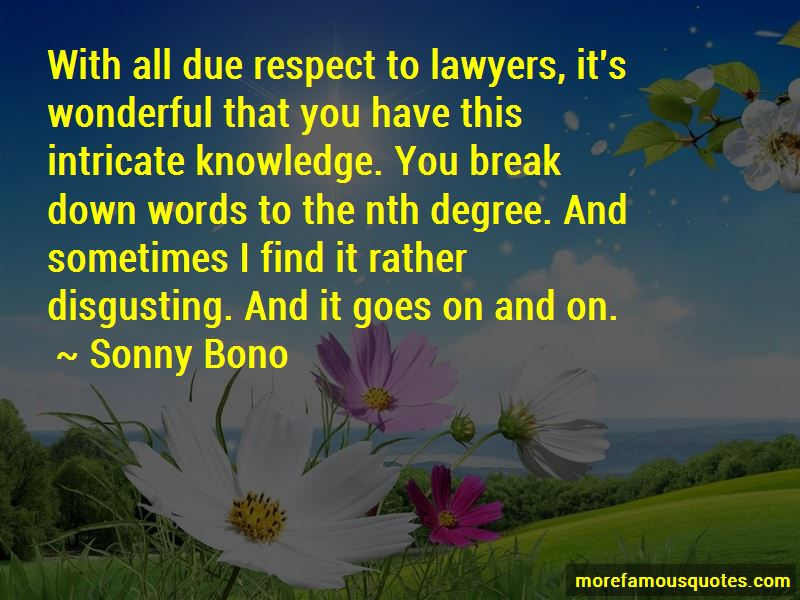 Sonny Bono Quotes Pictures 4