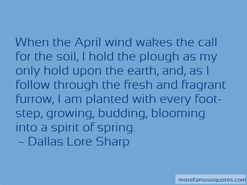 Dallas Lore Sharp Quotes
