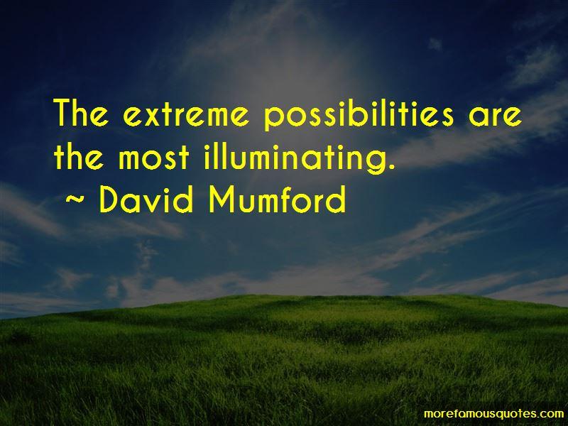 David Mumford Quotes