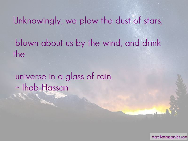 Ihab Hassan Quotes Pictures 4