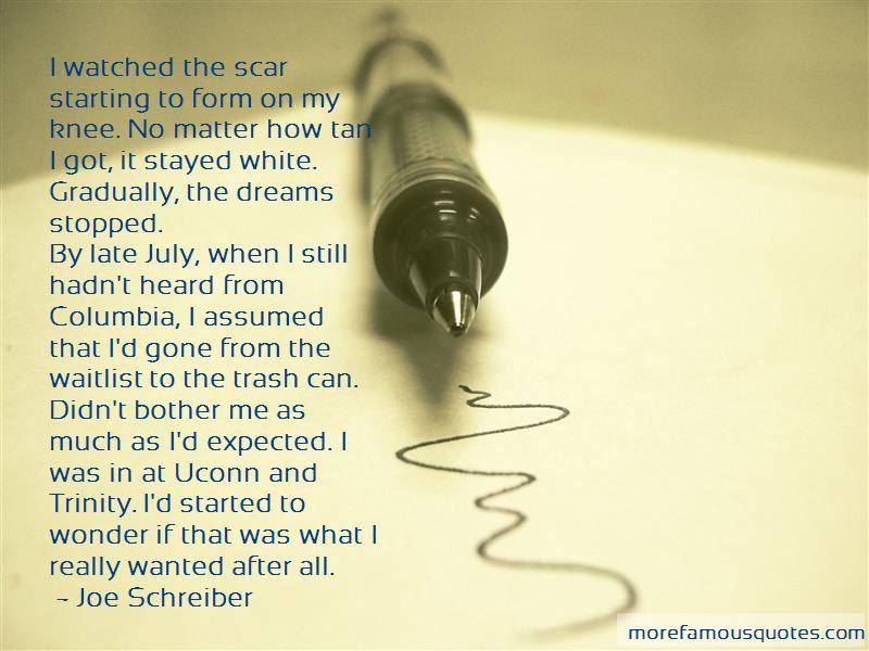 Joe Schreiber Quotes Pictures 3