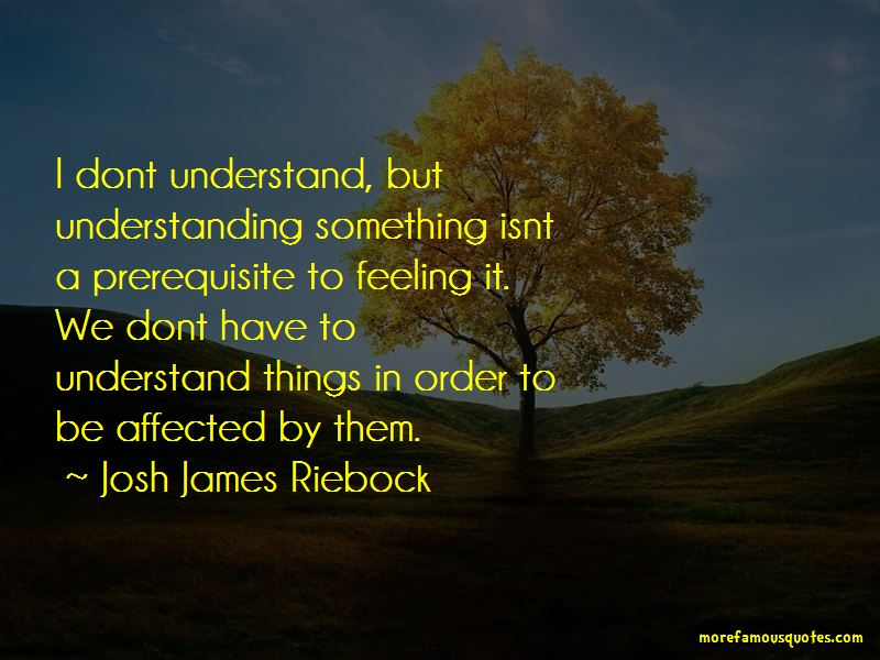 Josh James Riebock Quotes
