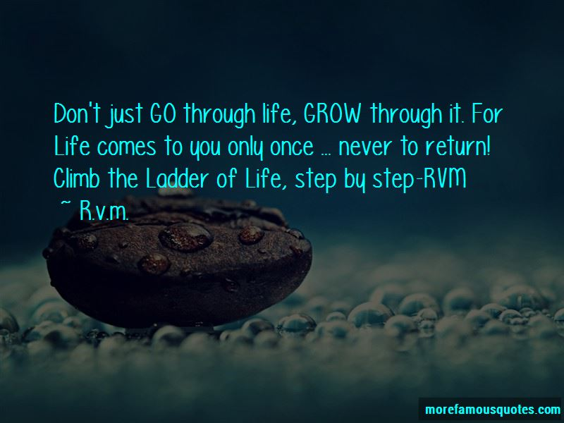 R.v.m. Quotes Pictures 3
