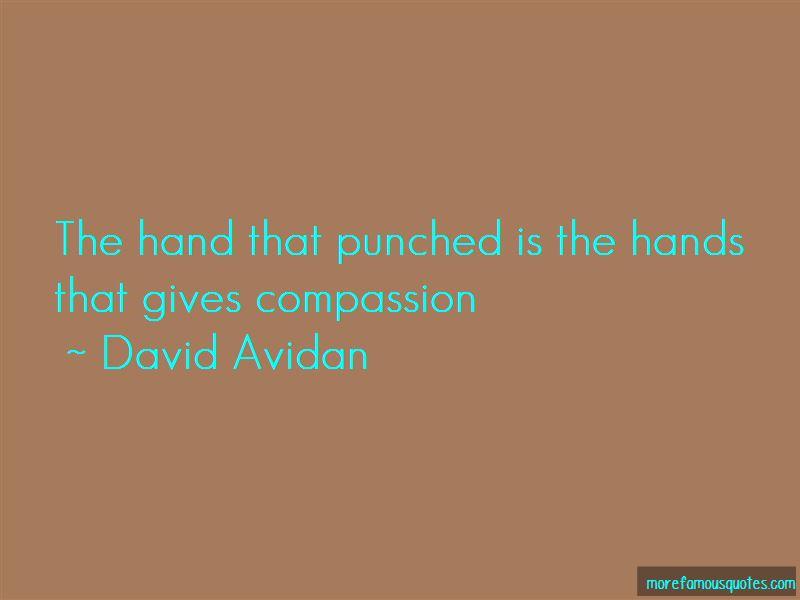 David Avidan Quotes