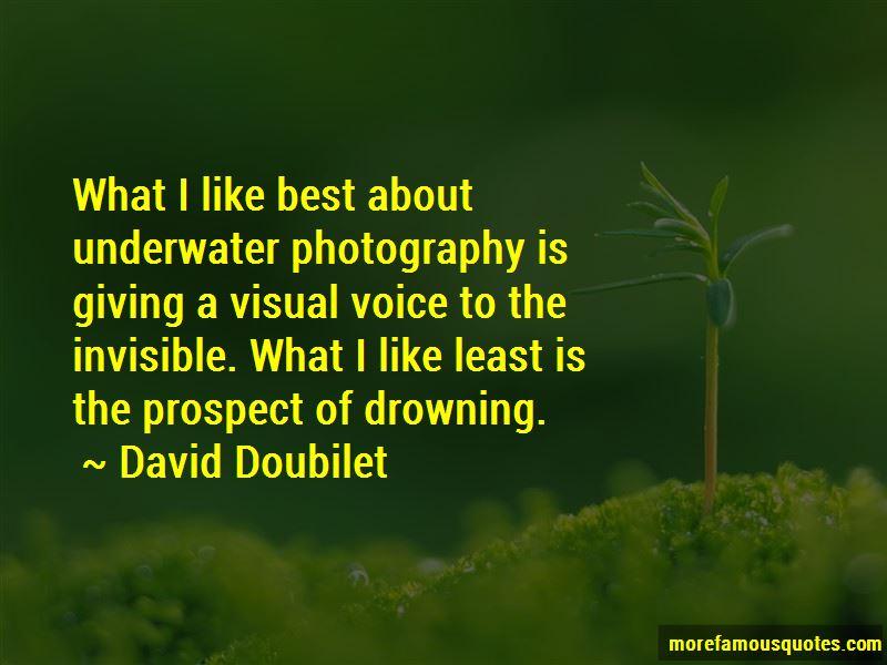 David Doubilet Quotes Pictures 4
