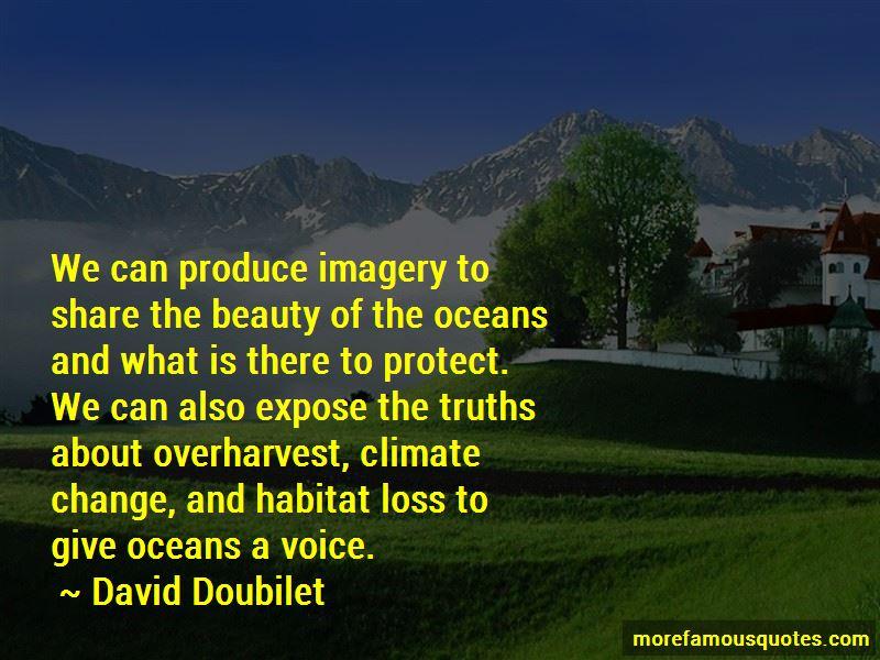 David Doubilet Quotes